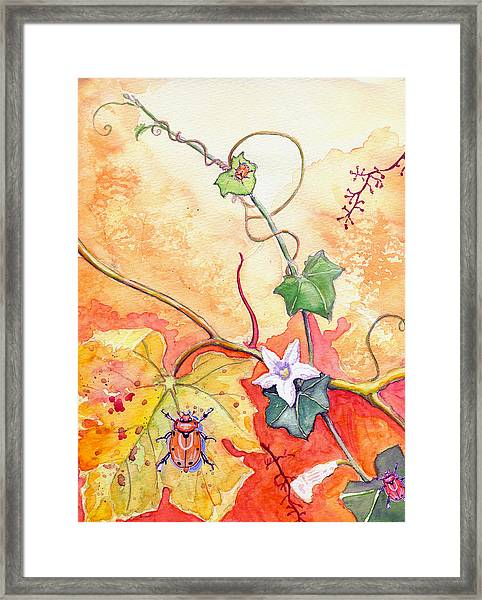 Grapevine Beetle Framed Print