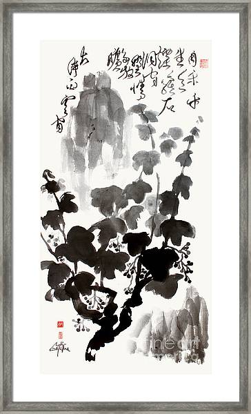 Grapevine Of Life Framed Print