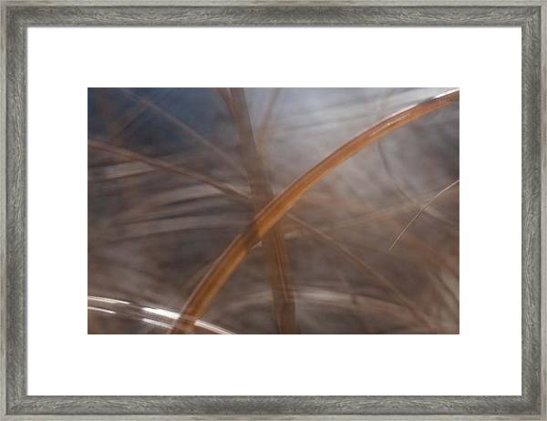 Grass - Abstract 1 Framed Print