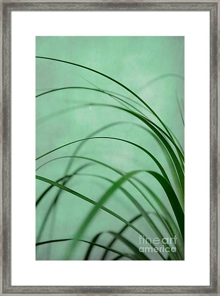 Grass Impression Framed Print