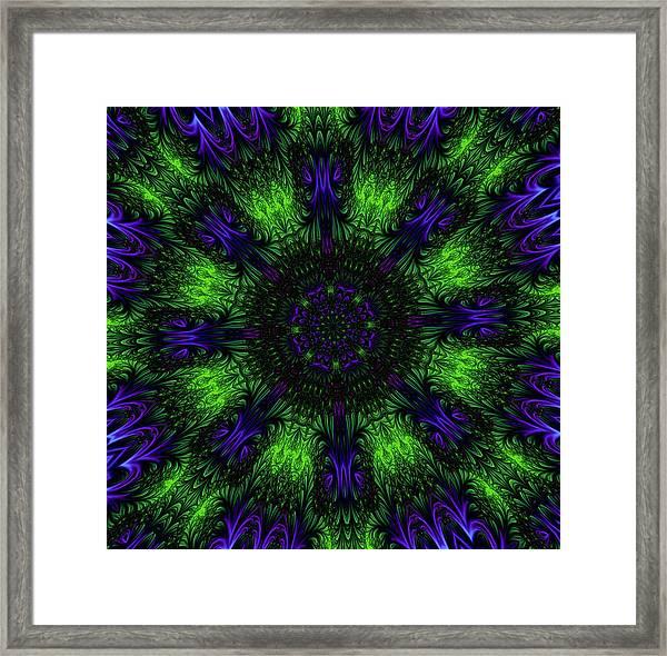 Grass Views Kaleidoscope Framed Print