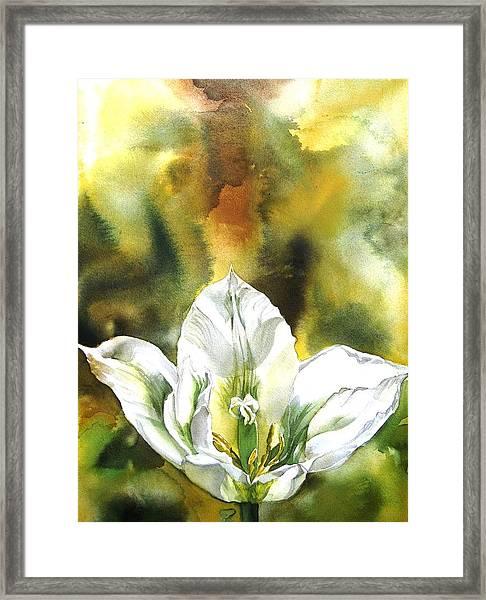 Grasshopper Tulip Framed Print