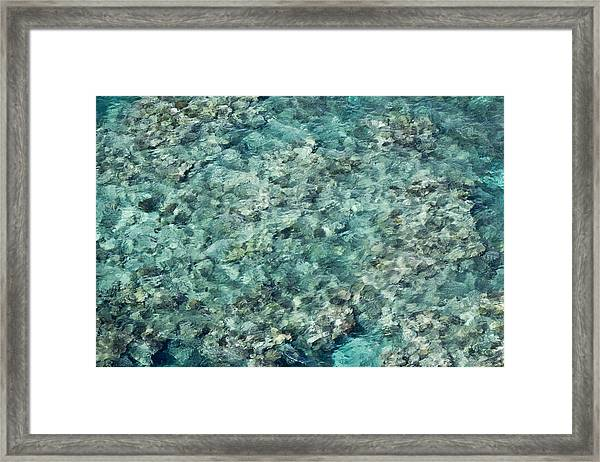 Great Barrier Reef Texture Framed Print by Debbie Cundy