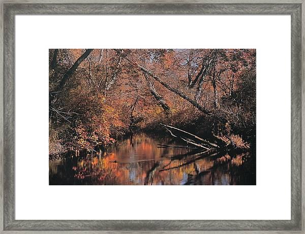 Great Egg Harbor River Framed Print