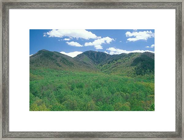 Great Smokey Mountains National Park, Tn Framed Print by James Steinberg