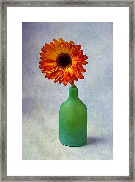 Green Bottle With Orange Daisy Framed Print