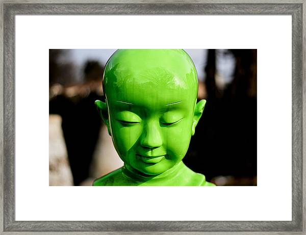 Framed Print featuring the photograph Green Buddha by Steve Stanger