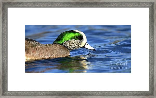 Green Illumination Framed Print