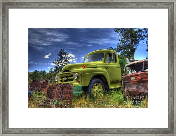 Green International Framed Print