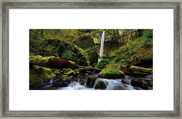 Green Seasons Framed Print