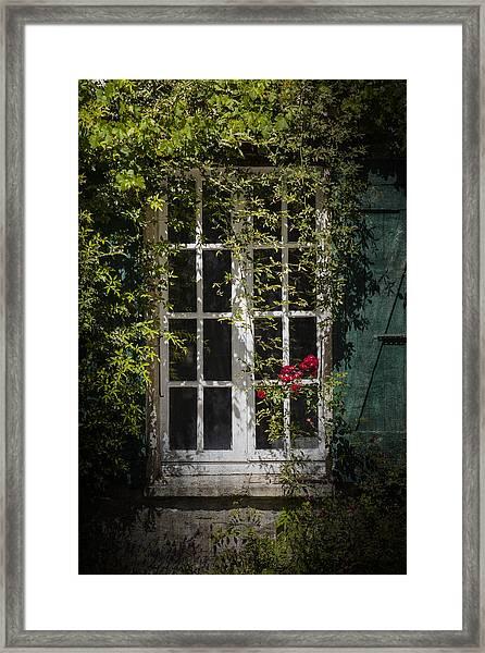 Green Shutter Framed Print
