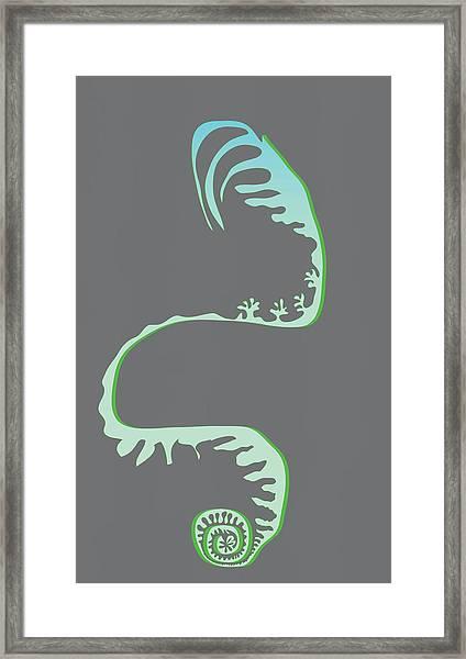 Green Spiral Evolution Framed Print