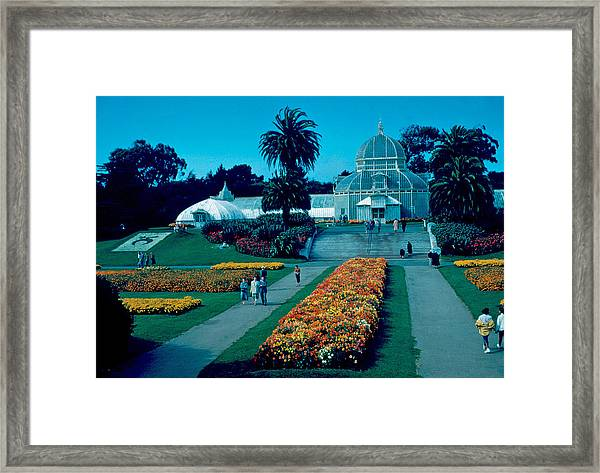 Greenhouse 1955 Framed Print by Cumberland Warden