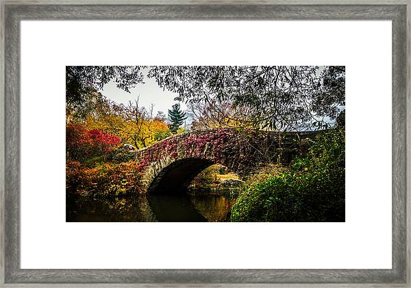 Greens Reds Yellow And Oranges Framed Print