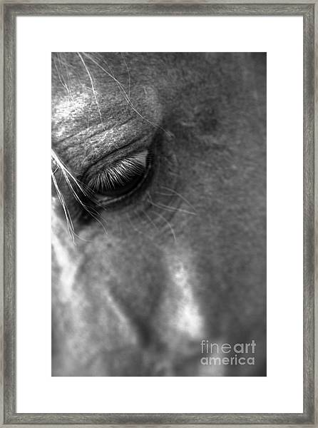 Grief Framed Print by Heather Roper
