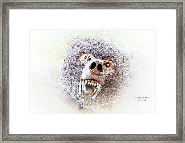Grizzly Dream Framed Print