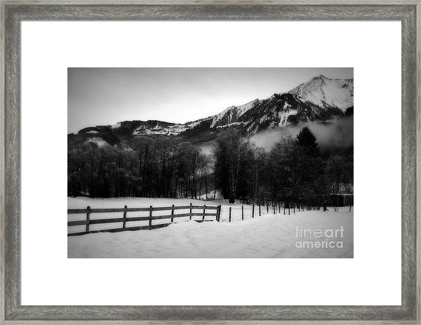 Groaning Trees Framed Print