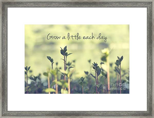 Grow A Little Each Day Inspirational Green Shoots And Leaves Framed Print