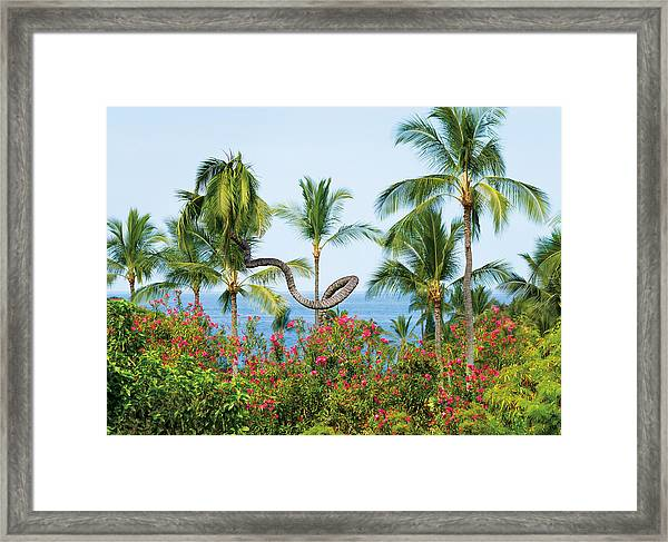 Grow Your Own Way Framed Print