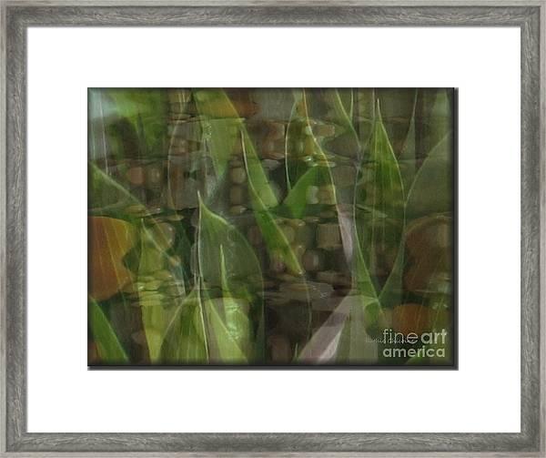 Growing Season Framed Print