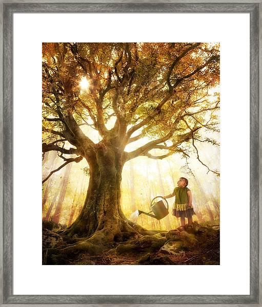 Growing Up Is Made Of Small Things Framed Print by Christophe Kiciak
