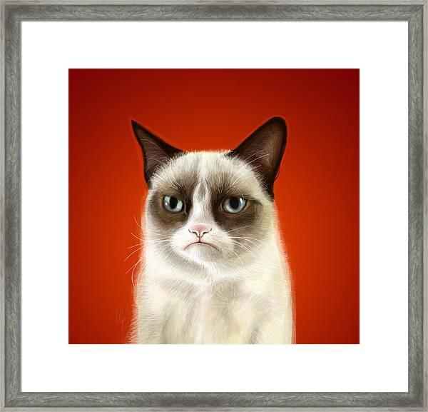 Grumpy Cat Framed Print