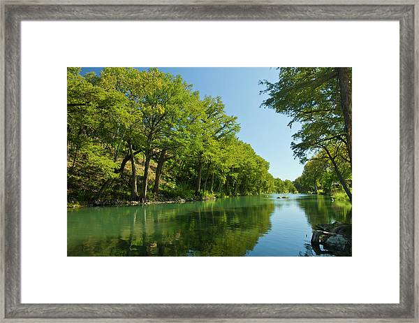 Guadalupe River And Bald Cypress Trees Framed Print