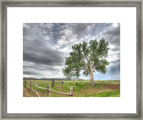 Guardian Of Smiley Canyon Framed Print