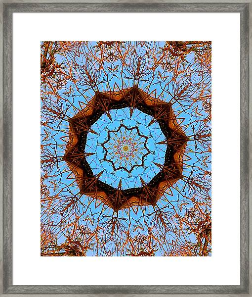 Framed Print featuring the photograph Guardian Of The Forest by Gigi Dequanne