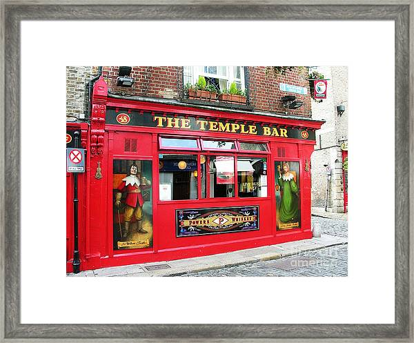Framed Print featuring the photograph Guinness Is Good For You by Mel Steinhauer