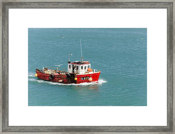 Gull Escort Framed Print