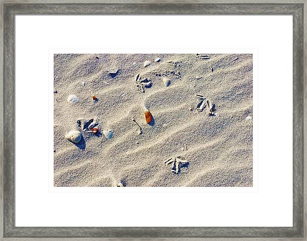 Gull Tracks Framed Print