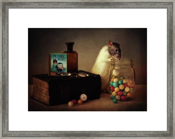 Gumballs (published In The New 1x Book memento.) Framed Print