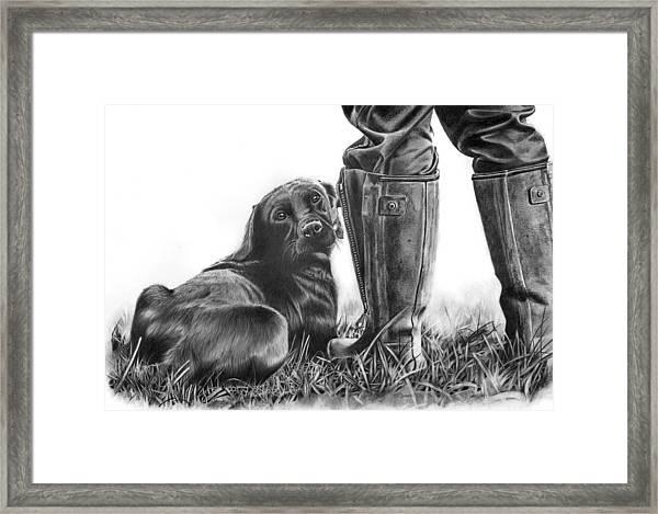 Gun Dog Framed Print