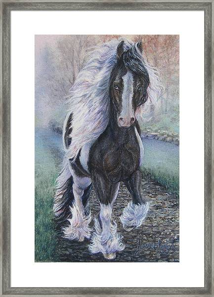 Foggy Morning Stroll Gypsy Horse  Framed Print