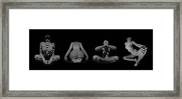 H Stripe Series One Sensual Zebra Woman Abstract Black White Nude 1 To 3 Ratio Framed Print