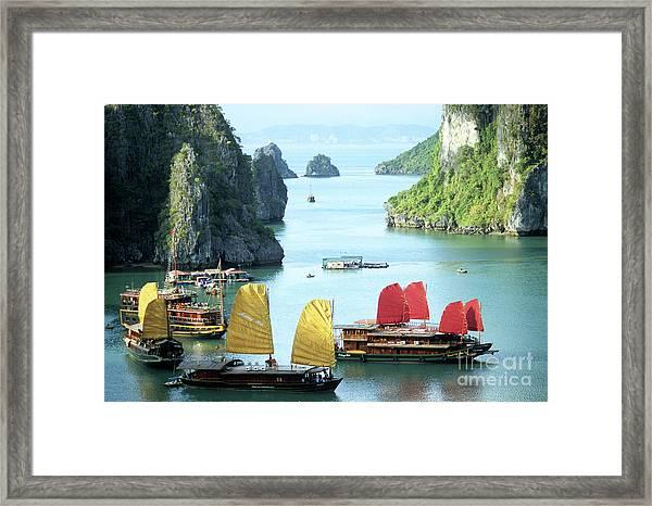 Halong Bay Sails 01 Framed Print