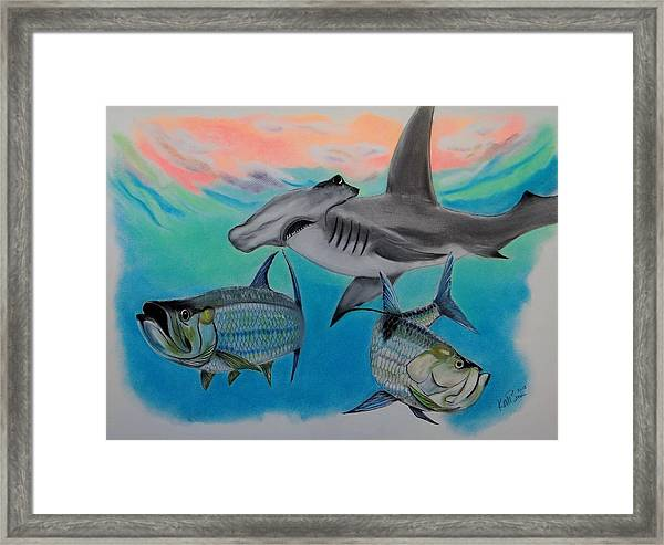 Hammerhead Dinner Framed Print