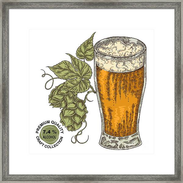 Hand Drawn Beer Glass With Hops Plant Framed Print
