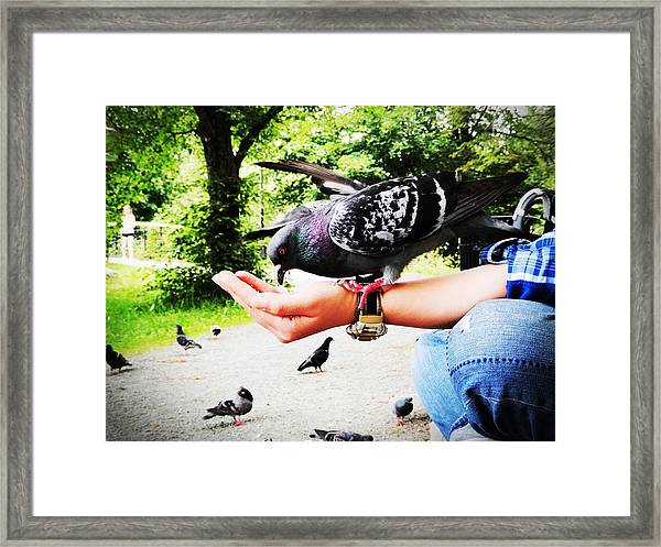 Handful Happiness Framed Print
