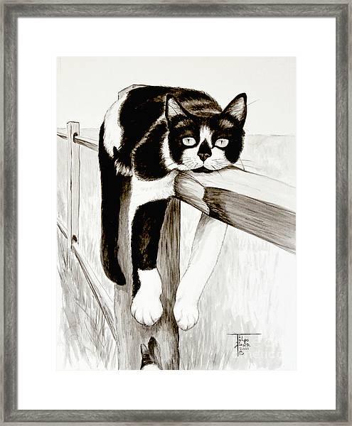 Hangin' Out Framed Print