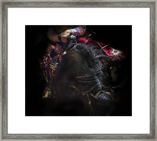 Hang'n On Framed Print