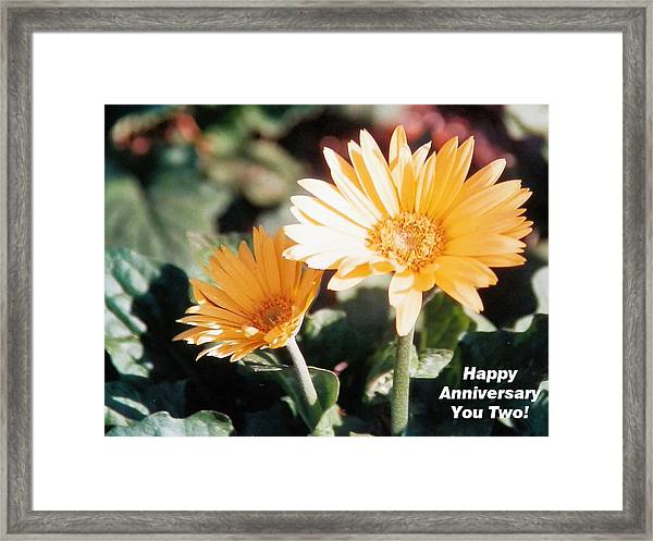 Happy Anniversary You Two Framed Print by Belinda Lee