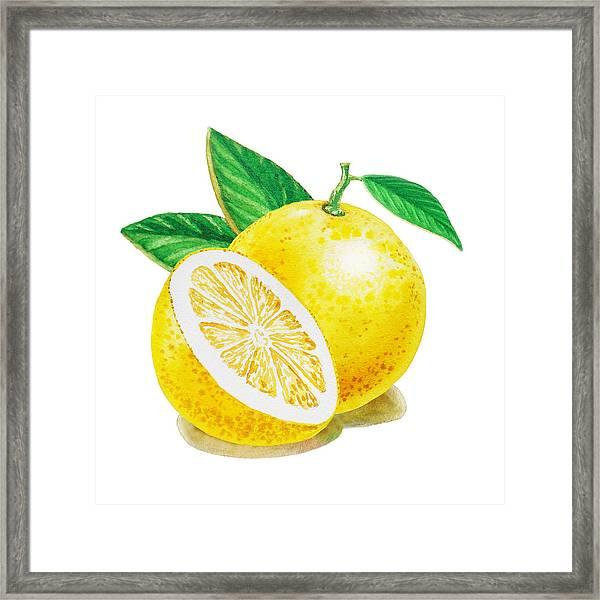 Happy Grapefruit- Irina Sztukowski Framed Print