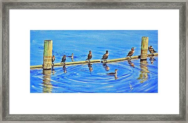 Harbor Patrol Framed Print