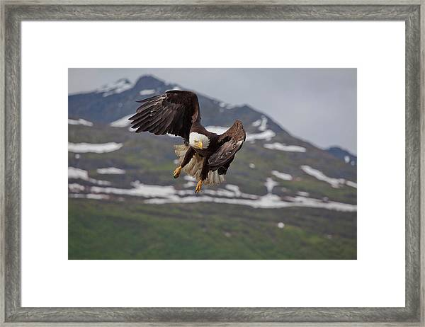 Hard Left Trun Framed Print by Tim Grams