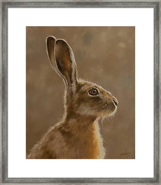Hare Portrait I Framed Print