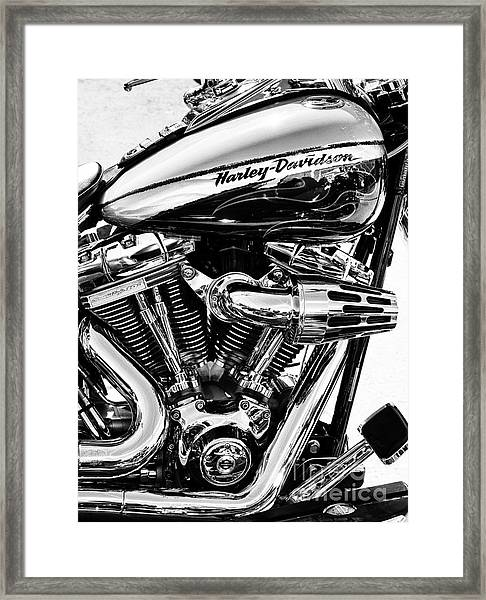 Harley Monochrome Framed Print by Tim Gainey