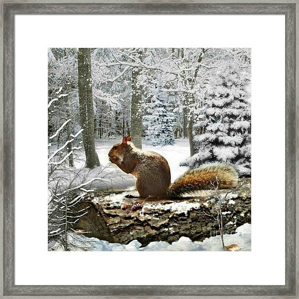 Harry In Winter 2 Framed Print