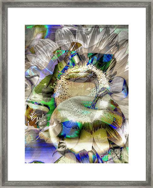 Framed Print featuring the digital art Harvest by Eleni Mac Synodinos